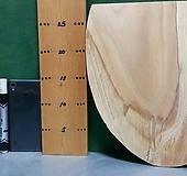 느티나무슬라이스(박쥐란,틸란드시아용)xp-4686|Echeveria Tina