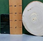 박쥐란,틸란드시아용 통나무(오동나무)xp-4716|